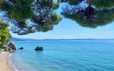 5 things to do in Trieste and surroundings
