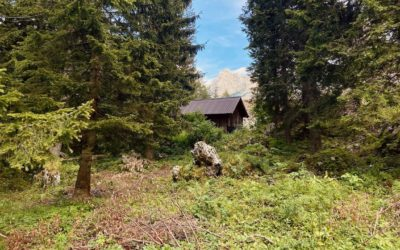 2 things NOT to miss in Slovenia: Logar Valley and kayaking under Mount Peca